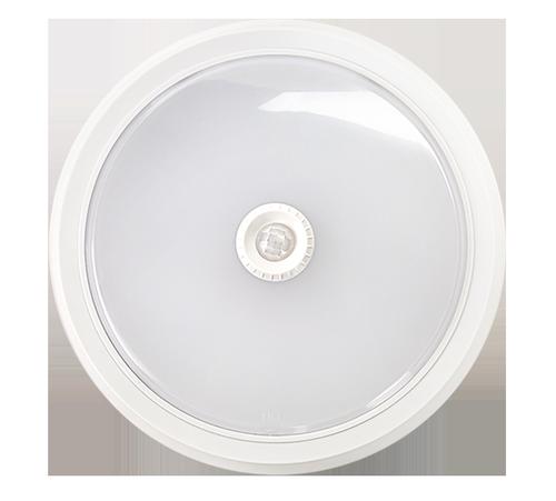 Светильник светодиодный СПБ-2Д 20Вт 230В 4000К 1400лм 300мм с датчиком белый  LLT