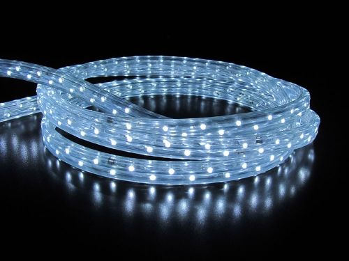 Дюралайт LED Белый, квадратный, 3-жилы